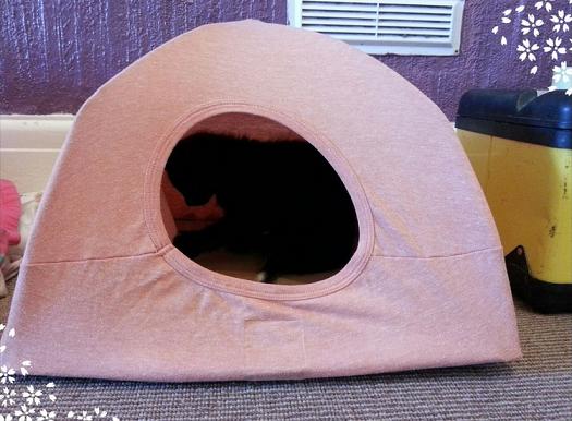 diy-cat-tent-idea-made-with-shirts