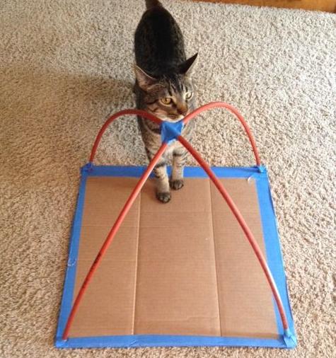 diy-cat-tent-idea