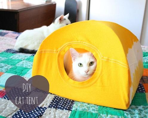 diy-cat-tent-t-shirt