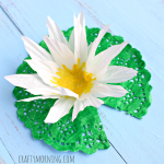 Make a Lily Pad Craft Using a Cupcake Liner & Doily