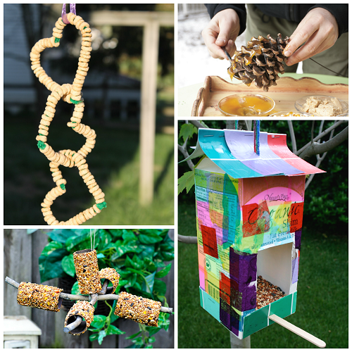 bird-feeders-for-kids-to-make-