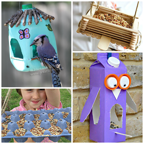 bird-feeders-for-kids-to-make