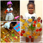 Make Leaf Collages with Contact Paper (Fall Craft)