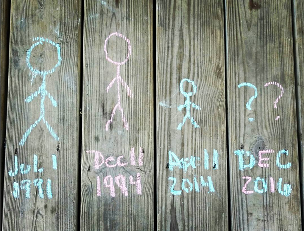 fence-chalkboard-pregnancy-announcement