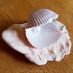 Make an Oyster out of Seashells