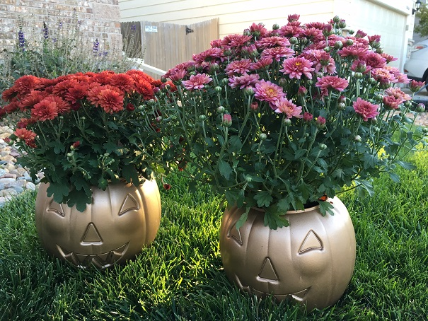 mum-pumpkin-decor