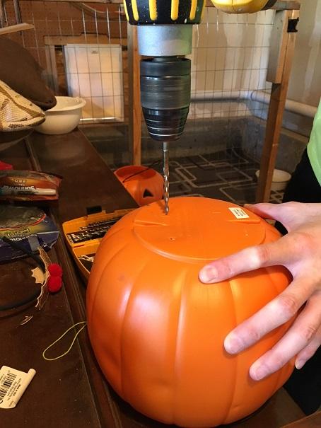 mum-pumpkins
