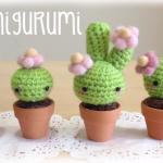 DIY Amigurumi Crochet Kawaii Cactus