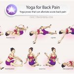 15 Easy Stretches to Release Lower Back and Hip Pain