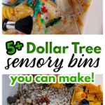 Dollar Tree Sensory Bin Ideas