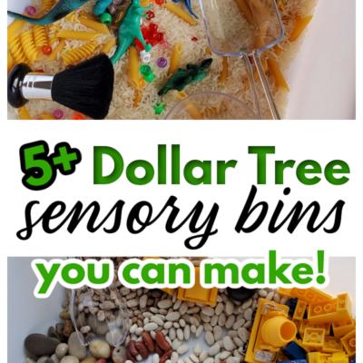 Dollar Tree Sensory Bin Ideas